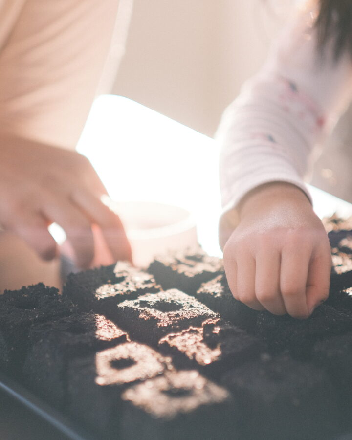 mom and daughter sowing seed into soil block